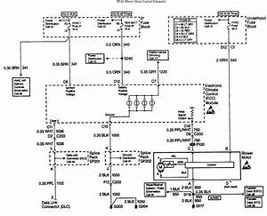 Diagram  Ac Blower Fan Motor Wiring Diagram Full Version