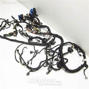 Wiring Harness Nissan Navara D40 2 5 Dci 07 05