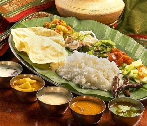 indian cuisine indian cuisine food darbaar