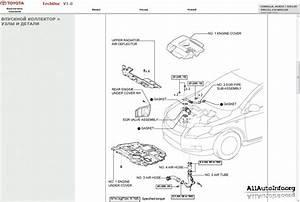U0420 U0443 U043a U043e U0432 U043e U0434 U0441 U0442 U0432 U043e  U043f U043e  U0440 U0435 U043c U043e U043d U0442 U0443 Toyota Corolla  Auris Repair Manual