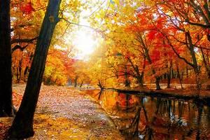 Autumn River Nature HD Wallpaper #10374