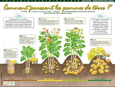 activtes pour la classe plantes aromatiques