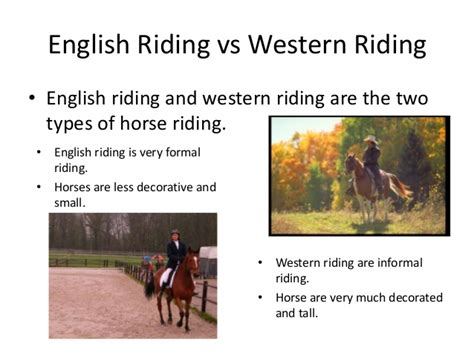 Everything about horse riding