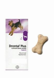 drontal plus tablet for dogs