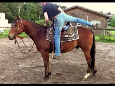 comment monter a cheval comment monter sur un cheval la r 233 ponse est sur admicile fr