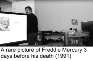a rare picture of freddie mercury only 3 days before his