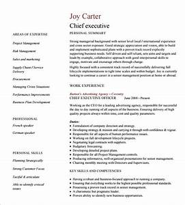 15 Executive Resume Template Free PDF DOC Sample