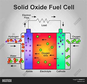 Solid Oxide Fuel Cell Vector  U0026 Photo  Free Trial