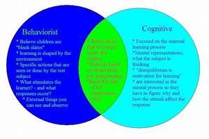 Behaviorist U0026 39 S View Vs  Cognitive Psychologist U0026 39 S View