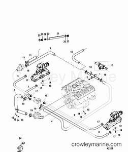 Fiat Bravo 2008 Wiring Diagram