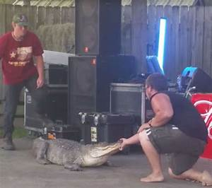 Gator bite leaves man in ironic T-shirt a bloody mess in ...