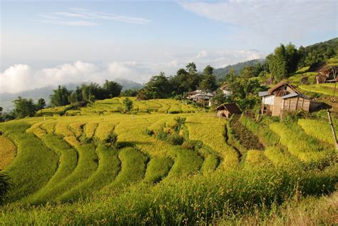 2 5 local house and terraced field on trek from sheka