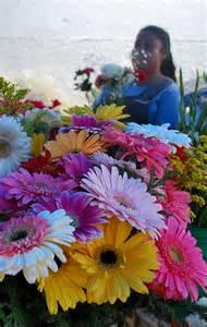 Mexican Flower Art