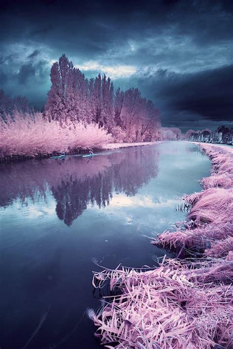 surreal color saturated photographs mimics dr seuss