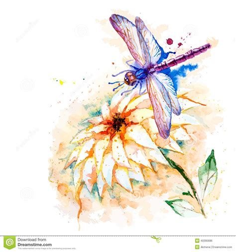 water color dragonfly  lily flower stock vector