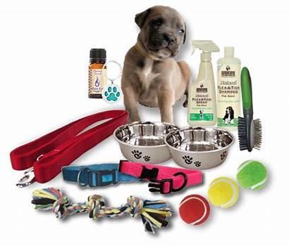 Puppy Starter Kit Dog Essential