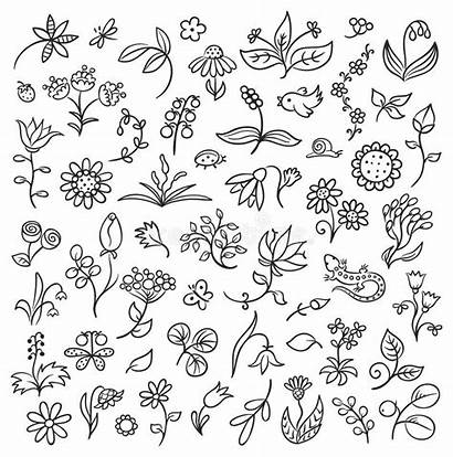 Floral Outlines Doodle Elements Doodles Drawing Drawings