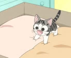 anime cat anime cat gif