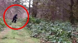 10 Real Bigfoot Sightings Caught on Tape (Video) – Covered ...