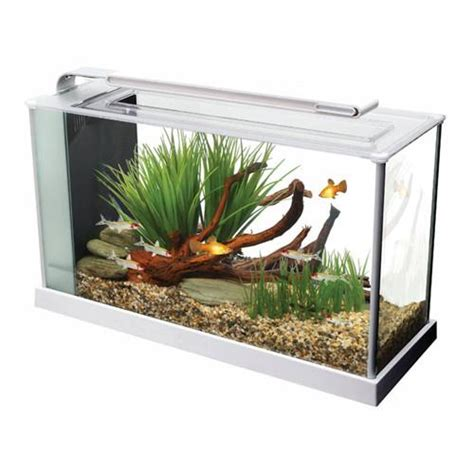5 liter aquarium fluval spec 5 19l nano aquarium white fresh n marine