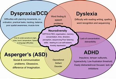 Dyspraxia Dyslexia Learning Needs Student Movement Dyscalculia