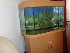 Aquarium 120l Mit Unterschrank : juwel aquarium 160lt aquarien ~ Frokenaadalensverden.com Haus und Dekorationen
