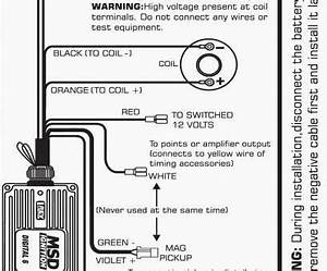 10 Professional Msd  Part Number 6420 Wiring Diagram