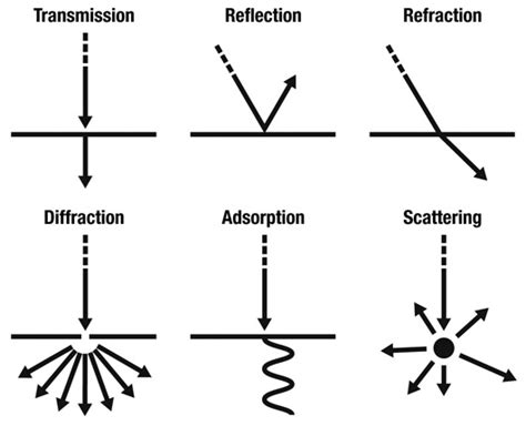 transmission of light weekly science quiz september 2011