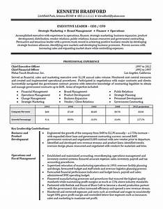 high level executive resume example sample With director level resume examples