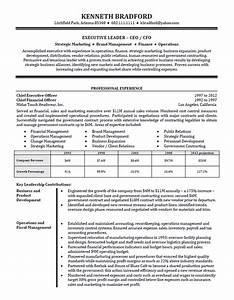 high level executive resume example sample With executive level resume