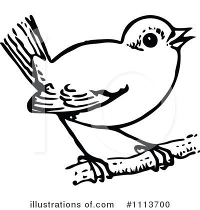 parrot clipart black and white bird clip black and white cliparts co