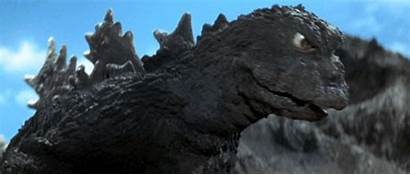 Godzilla Monster Sea Giant Bird Film Series