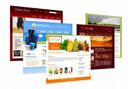 Web Designing Website Courses Development Why Need