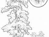 Oak Tree Drawing Paintingvalley sketch template