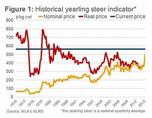 Real Cattle Prices Highest In 30 Years Mla Beef Central