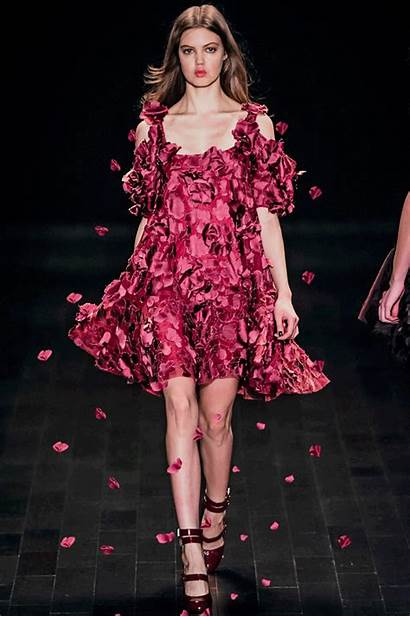 Falling Gifs Pink Flowers Petals Lindsey Wixson