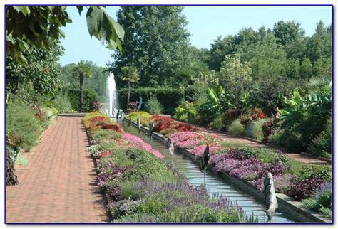 daniel stowe botanical garden daniel stowe botanical garden membership garden home