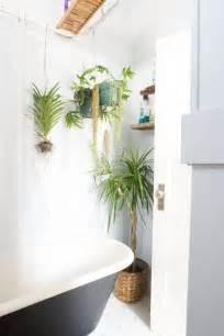 small bathroom decorating ideas best plants that suit your bathroom fresh decor ideas