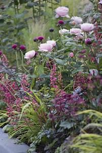 Englischer Garten Pflanzen : die lila blumen sind symbol der weiblichkeit ~ Articles-book.com Haus und Dekorationen