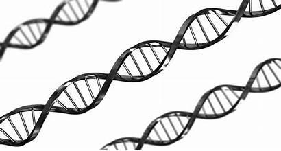 Genetic Human Clipart Genes Dna Diagnosis Improve