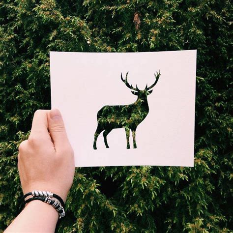 papieren silhouetten van dieren  de natuur eyespired