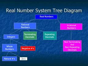 Real Number System Tree Diagram