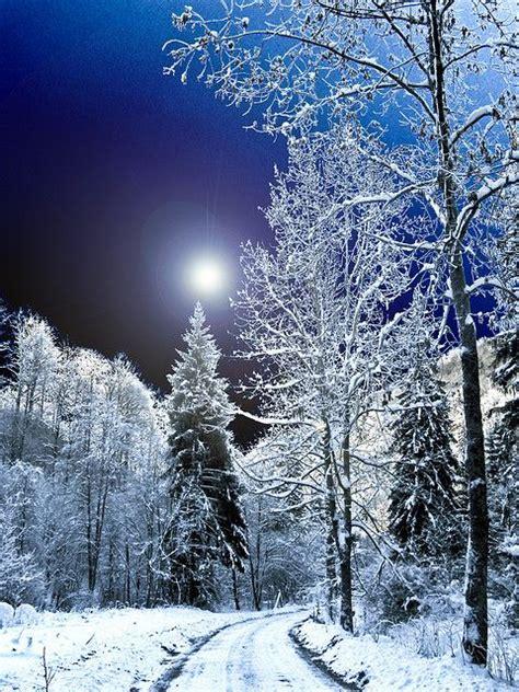 Winter Night, Winter And Winter Wonderland On Pinterest