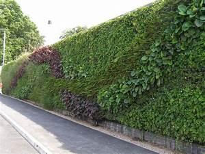 Mur Végétal Extérieur : vertical gardening making lewes ~ Premium-room.com Idées de Décoration