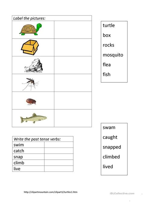 There is little documentary evidence for most of little turtle's life. The Little Turtle worksheet - Free ESL printable ...