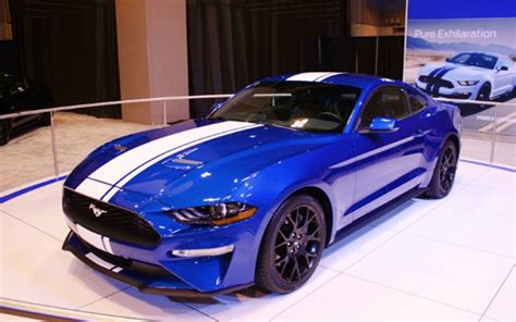 2019 Ford Mustang Shelby Gt500 Super Snake  Ford Cars