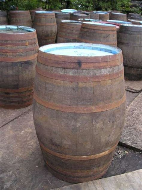 barrel garden  gallon oak barrel
