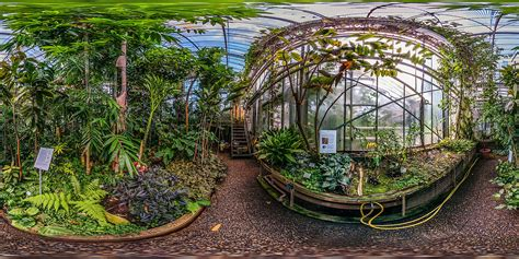 botanischer garten darmstadt tropenhaus panorama fotos