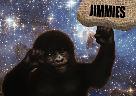 Gorilla Munch Meme - new gorilla munch that really rustled my jimmies know your meme