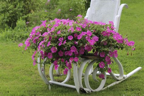 lawn and garden lawn ornaments and garden tips on using in decor